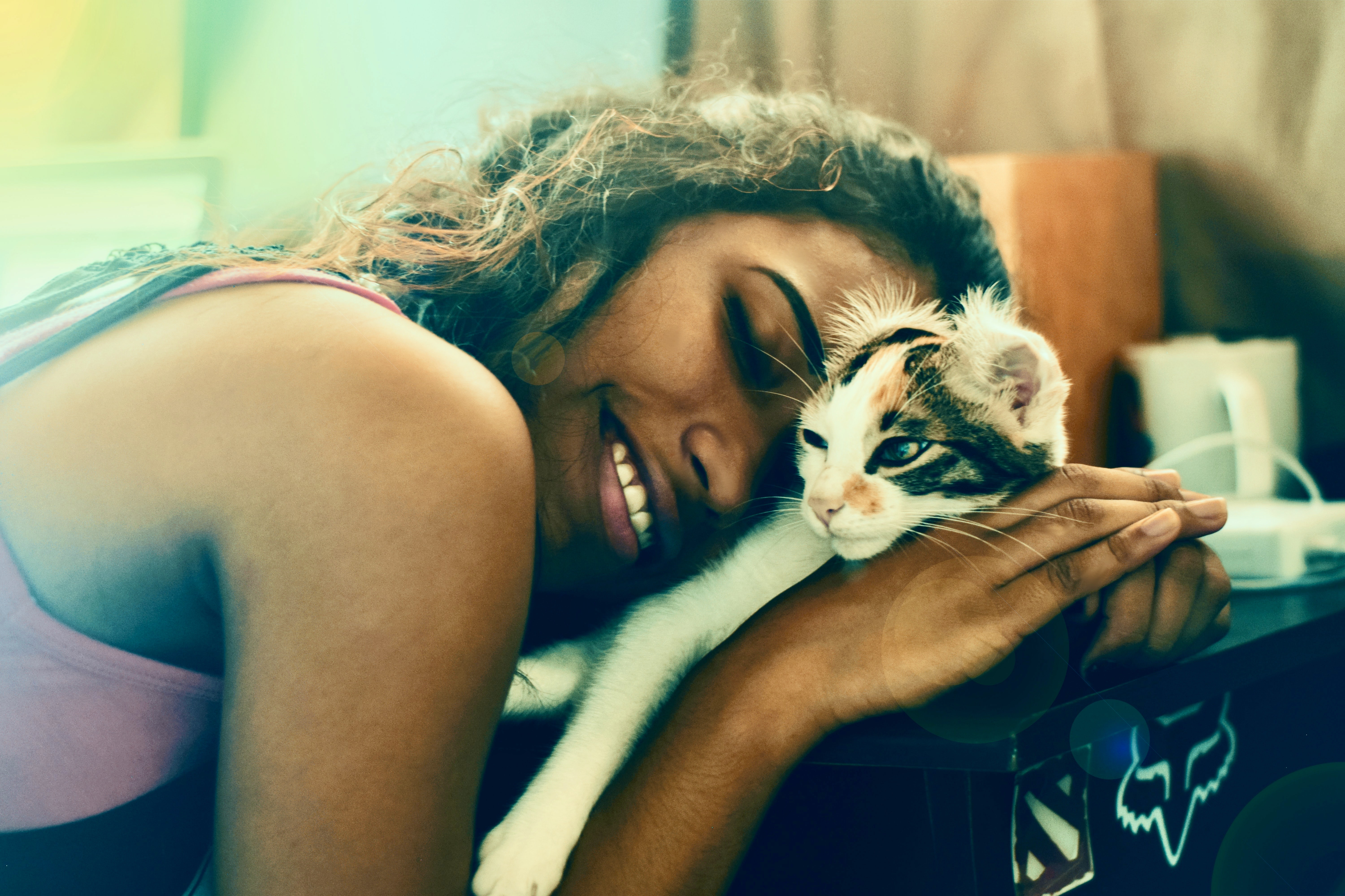 Stroking a cat or dog for 10 minutes can significantly reduce your stress levels.